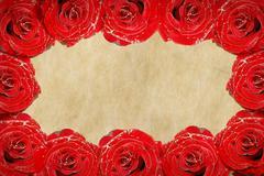 Rose frame - stock illustration