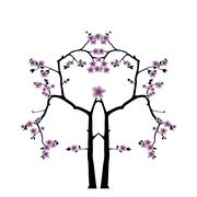 Stock Illustration of Pink cherry blossom sakura flowers  in Japanese style