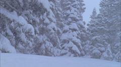 Skier skiing on mountain slope - stock footage