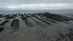 Cancale french Britain, oyster bed with drone 1 Stock Footage