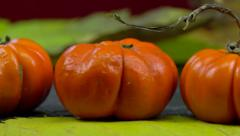 Jack be little (small pumpkin) on fallen leaves - rotating Stock Footage