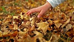Child hand playing with dry brown leaves - stock footage