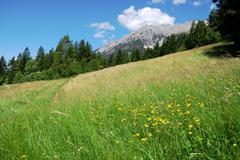 Mountain landscape in the Wilder Kaiser region of Austria Stock Photos