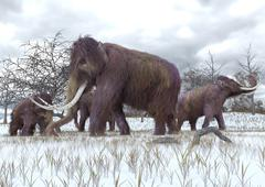 Stock Illustration of Woolly Mammoths Grazing