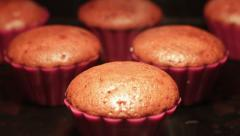 Cupcakes Baking in the Oven - stock footage