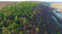 Aerial view of mixed forests (pine) Stock Footage