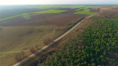 Flight over the fields and forest Stock Footage