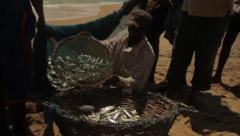 The fishermen get caught fish from the net on the beach of the ocean Stock Footage