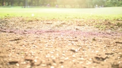 Girl walk alone in the park against sun light Stock Footage