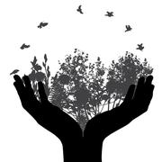 Set of Hand and Plant, Tree, Foliage Elements Silhouette Vector Stock Illustration