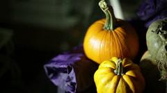 Halloween pumpkins pumpkin autumn fall Stock Footage