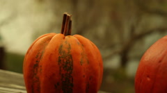 Pumpkins on railing in america autumn 2 Stock Footage