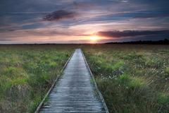 Wooden path on marsh and sunset Stock Photos