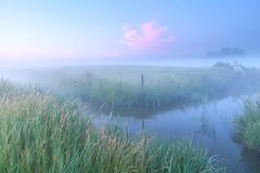 Dutch farmland with river in foggy morning - stock photo