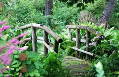 Wooden Bridge in a shady park Stock Photos