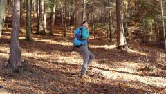 Relaxed woman walking in the autumnal forest and taking a deep breath - stock footage