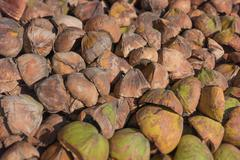 Pile of broken coconut husks Stock Photos