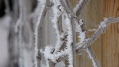 Beautiful winter rime on the branch - stock footage