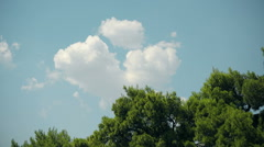 Travel sky above tree tops - summer time, Makarska - Croatia. Stock Footage