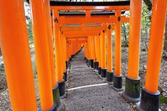 Fushimi Inari Shrine Torii in kyoto Japan - stock photo