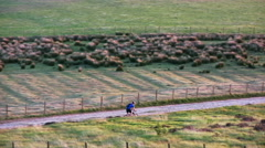 Cyclists on Rivington Moor - stock footage
