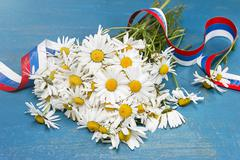 Daisies and tricolor ribbon. Day of Peter and Fevronia Stock Photos