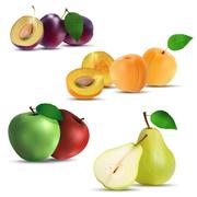 Set of fruits - plum, apricot, apple and pear - stock illustration