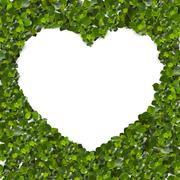 Green Leaves in heart shape on white background - stock illustration