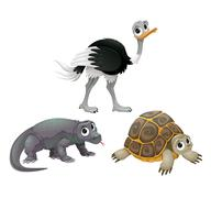 Stock Illustration of Funny Australian animals, ostrich, turtle and Komodo dragon