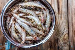 Whole fresh raw shrimps seafood Stock Photos