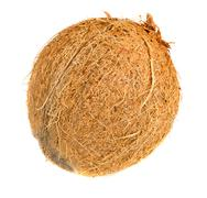Stock Photo of Whole coconut isolated