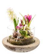 Spring Deco - stock photo