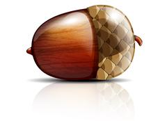 Glossy acorn on white background - stock illustration