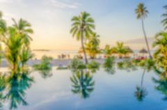 Defocused background of palms reflecting on an infinity pool Stock Photos