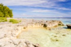 Defocused background of tropical beach in French Polynesia Stock Photos