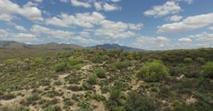 Low aerial shot over desert  with cacti - stock footage