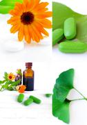 Various homeopathy related images in a collage Stock Photos