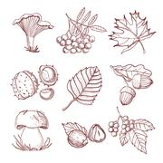 Hand Drawn Autumn Set - stock illustration