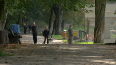 Elderly couple with a husky dog walking in the forest, Brasov Stock Footage