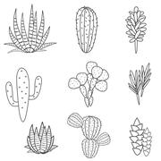Succulents plant vector set. Botanical black and white cactus flora collection Stock Illustration