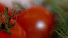 Dolly shot Extreme close-up tomatoes Stock Footage