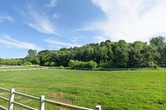 landscape of horse ranch - stock photo