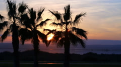 Silhouette of palm trees at sunset, Time lapse - stock footage