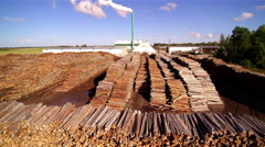 Wooden sticks being stacked on the side of the factory Stock Footage