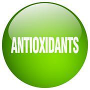 Stock Illustration of antioxidants green round gel isolated push button