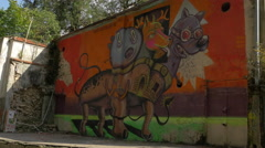 Graffiti on a wall in Brasov Stock Footage