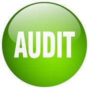 Audit green round gel isolated push button Stock Illustration
