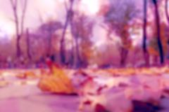 Autumn fallen leaves blurred effect, purple, Tinted filtered image - stock photo