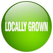 Locally grown green round gel isolated push button Stock Illustration
