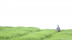 Boy climbed to the top of the field, horizon Stock Footage